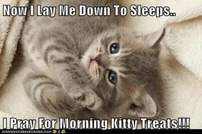 Now I Lay Me Down To Sleeps..  I Pray For Morning Kitty Treats!!!