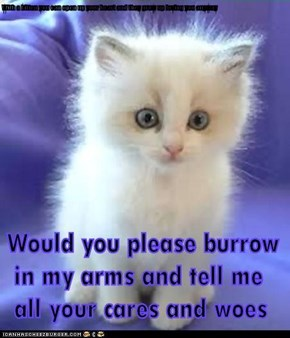 With a kitten you can open up your heart and they grow up loving you anyway