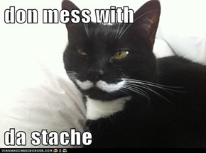 don mess with  da stache