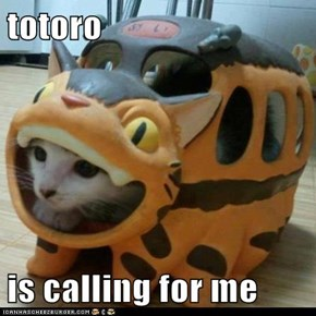 totoro  is calling for me