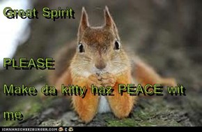 Great Spirit PLEASE Make da kitty haz PEACE wit me