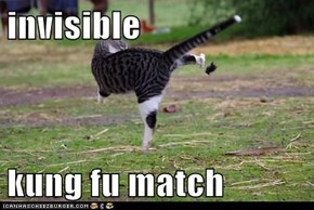 invisible  kung fu match
