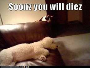 Soonz you will diez