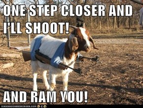 ONE STEP CLOSER AND I'LL SHOOT!  AND RAM YOU!