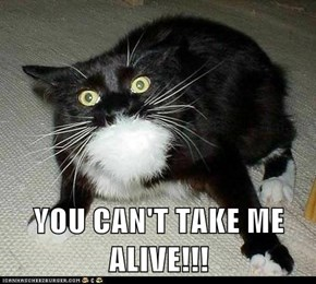 YOU CAN'T TAKE ME ALIVE!!!