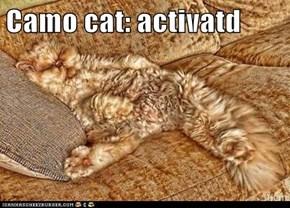Camo cat: activatd