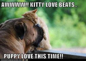 AWWWW!! KITTY LOVE BEATS..  ..PUPPY LOVE THIS TIME!!