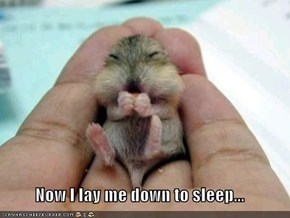 Now I lay me down to sleep...