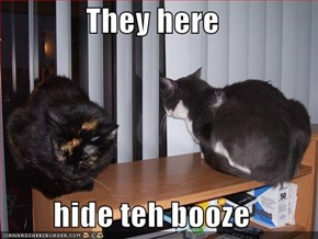 They here  hide teh booze