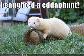 I caughted a eddaphunt!