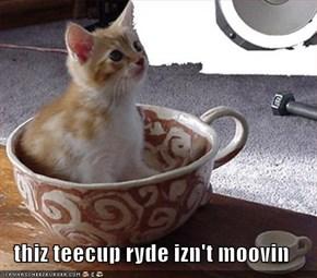 thiz teecup ryde izn't moovin