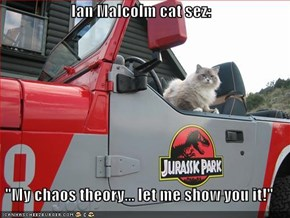 "Ian Malcolm cat sez:  ""My chaos theory... let me show you it!"""