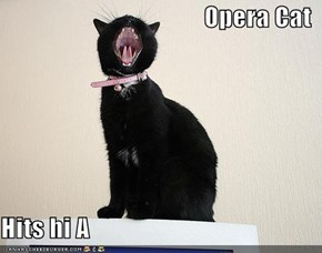 Opera Cat  Hits hi A