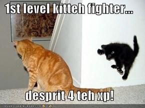 1st level kitteh fighter...  desprit 4 teh xp!