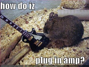 how do iz  plug in amp?