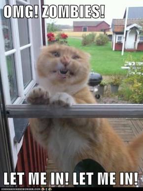 OMG! ZOMBIES!  LET ME IN! LET ME IN!