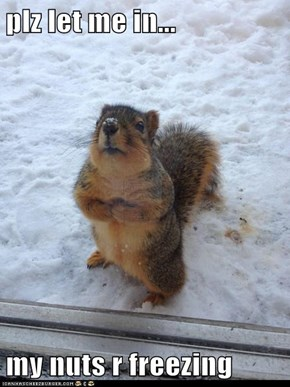plz let me in...  my nuts r freezing