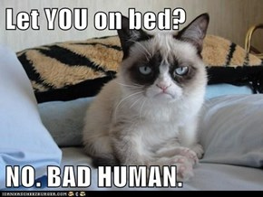 Let YOU on bed?  NO. BAD HUMAN.