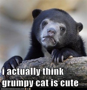 i actually think grumpy cat is cute