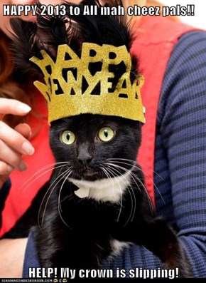 HAPPY 2013 to All mah cheez pals!!  HELP! My crown is slipping!