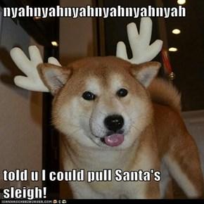 nyahnyahnyahnyahnyahnyah  told u I could pull Santa's sleigh!