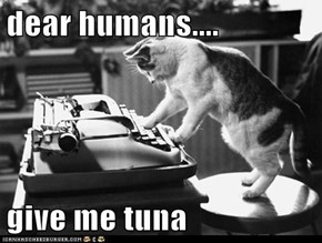 dear humans....  give me tuna