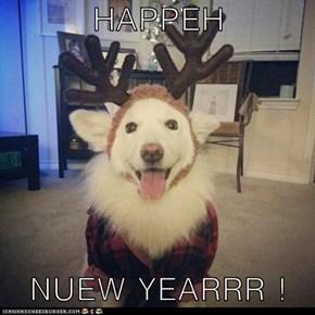 HAPPEH  NUEW YEARRR !