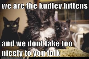 we are the kudley kittens  and we dont take too nicely to you folk