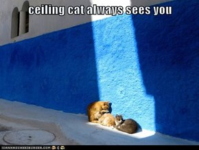 ceiling cat always sees you