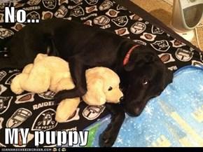 No...  MY puppy