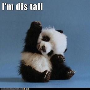 I'm dis tall