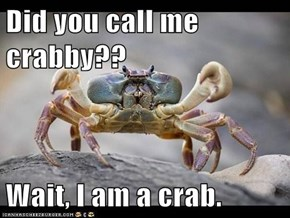 Did you call me crabby??  Wait, I am a crab.