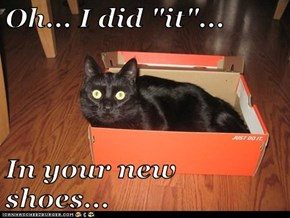 "Oh... I did ""it""...  In your new shoes..."