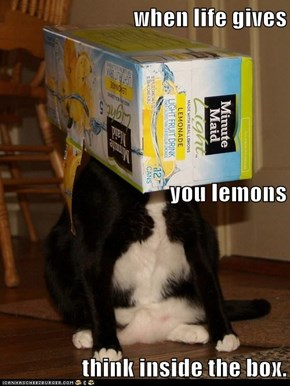 when life gives you lemons think inside the box.