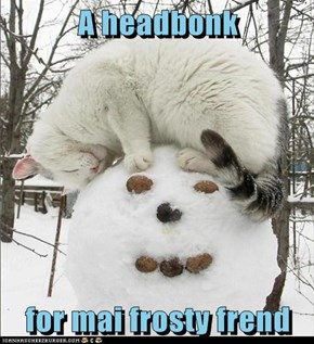 A headbonk  for mai frosty frend