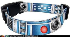 Star Wars R2-D2 Dog Collar