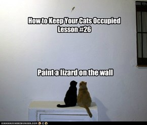 How to Keep Your Cats Occupied Lesson #26