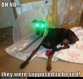 OH NO...  they were supposed to be red!