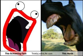 This Screaming Face Totally Looks Like This Horse