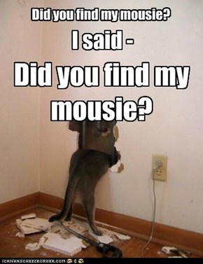 Did you find my mousie?