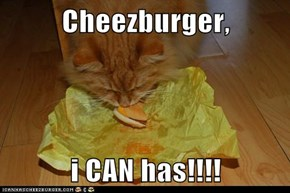 Cheezburger,  i CAN has!!!!