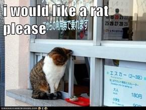 i would like a rat please