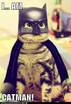 I... AM...  CATMAN!