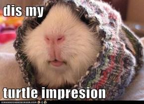 dis my   turtle impresion