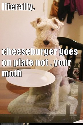 literally. cheeseburger goes on plate not . your moth