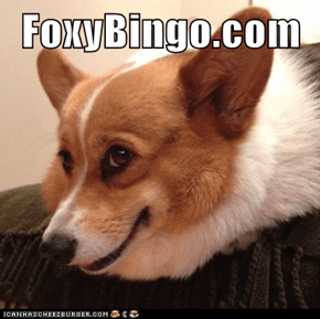 FoxyBingo.com