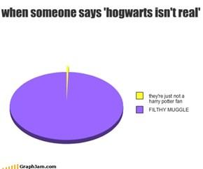 Pfft. Lousy Muggles
