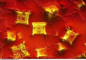 A New Perspective of the Day: Soy Sauce Under a Microscope