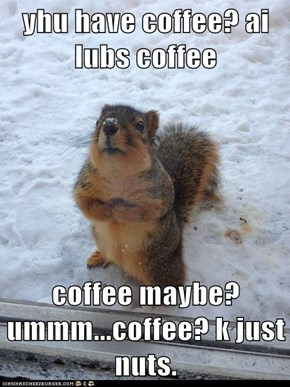 yhu have coffee? ai lubs coffee  coffee maybe?ummm...coffee? k just nuts.