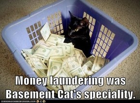 Money laundering was Basement Cat's speciality.